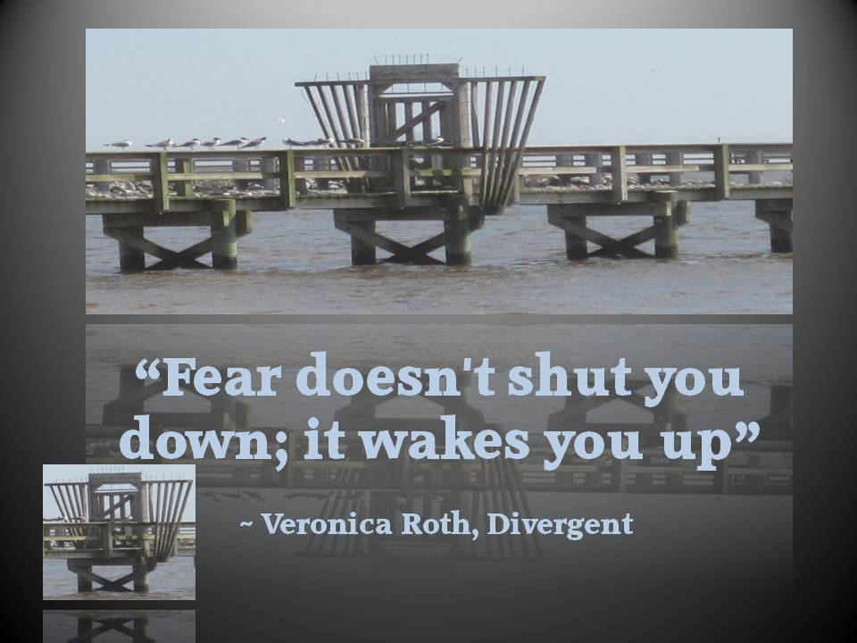 Don't Let Fear Shut You Down