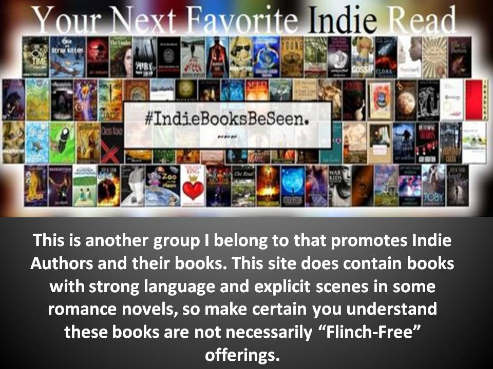 Indie Books Be Seen Facebook Group
