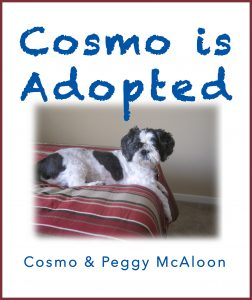 Cosmo Is Adopted