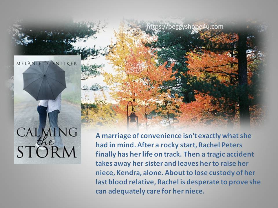 """Calming the Storm"" by Melanie D. Snitker will restore your faith in yourself."
