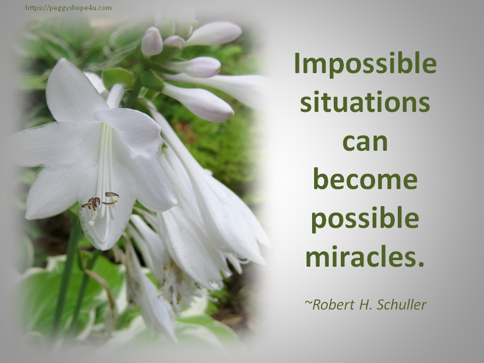 Miracles are the foundation of hope.