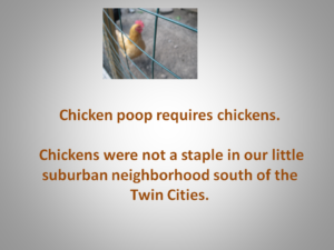 Who in their right mind would bring chicken poop into the house?
